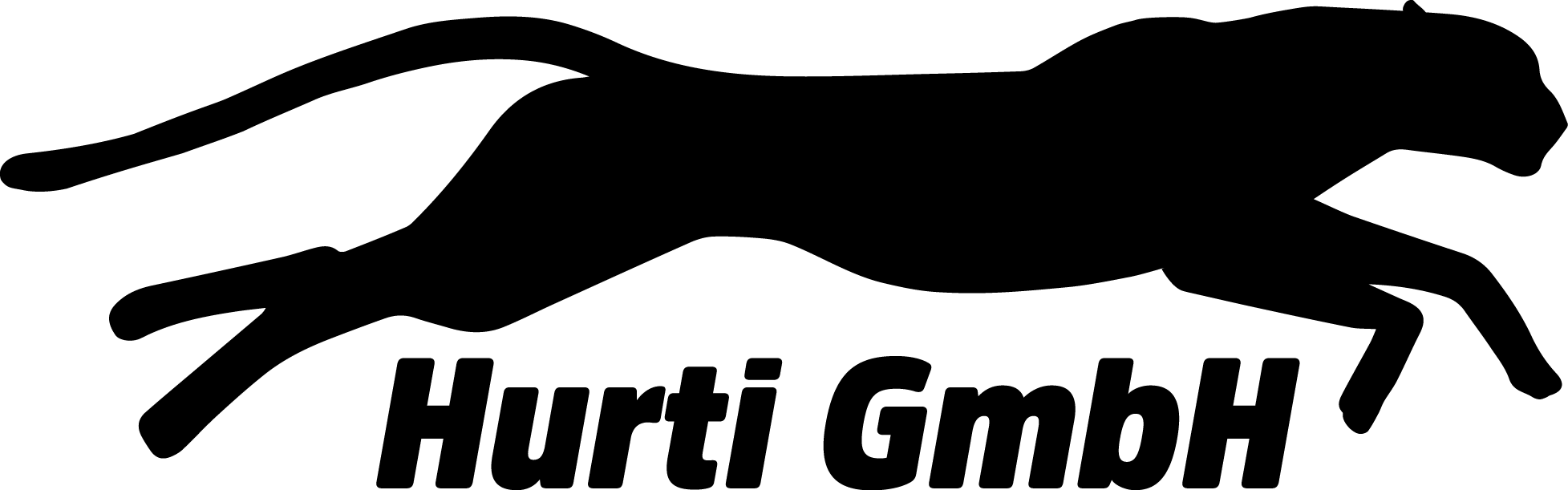 Hurti GmbH Transporter | Lagerbox | Umzug Logo